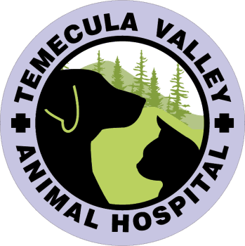 Temecula Valley Animal Hospital